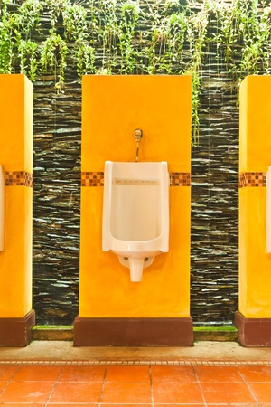 colorful of urinals with creeper plant and waterfall background