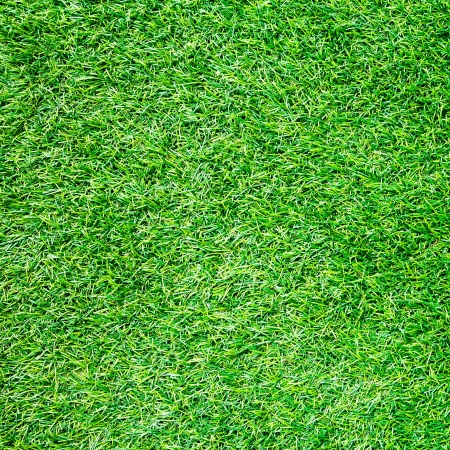 Artificial Grass Field Top View Texture  photo