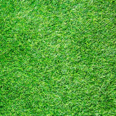 synthetic: Artificial Grass Field Top View Texture