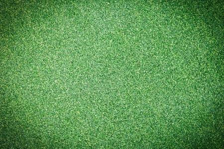 Artificial Grass Field Top View Texture  photo
