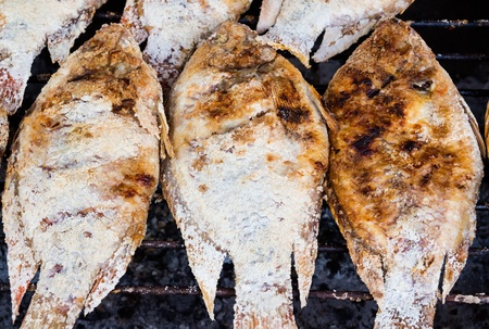 Grilled Tilapia fish on the grill Stock Photo - 21711553