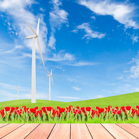 tulips with wind turbine on green grass field against blue sky background and wood plank foreground,used for green earth concept photo