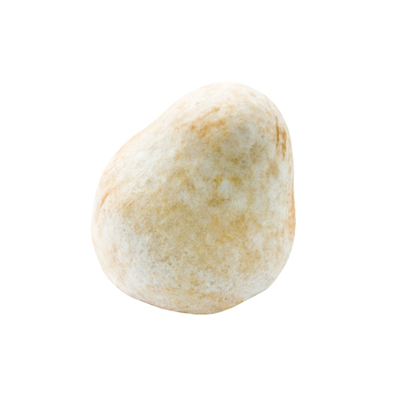 straw mushroom isolated on white background with clipping path photo