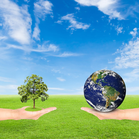 photoelectric: Green Earth concept,hand holding tree and earth against green field and blue sky background Stock Photo