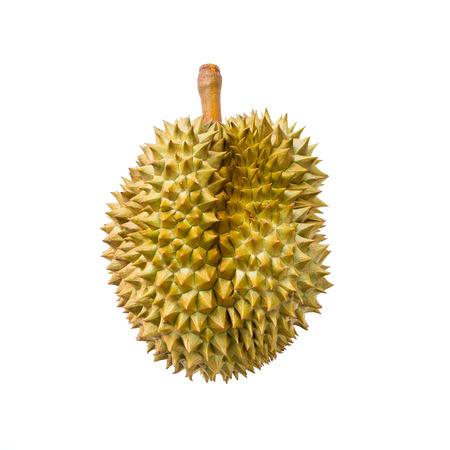 Durian isolated on white background Standard-Bild