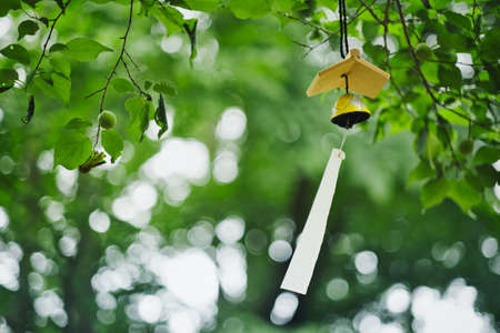 wind chimes in green forest
