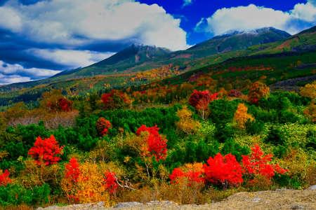 Autumn leaves of Mt. Tokachi