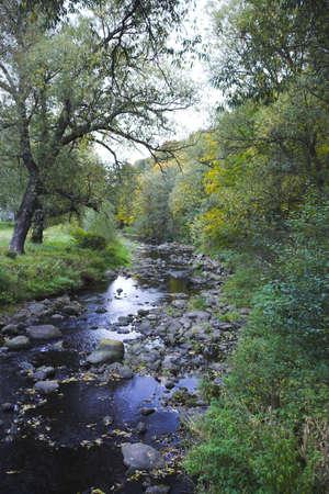 fairyland: Creek
