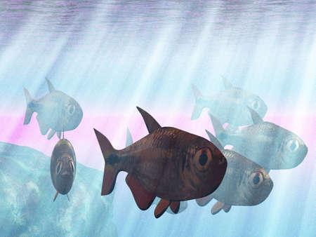 Underwater Stock Photo - 2561126