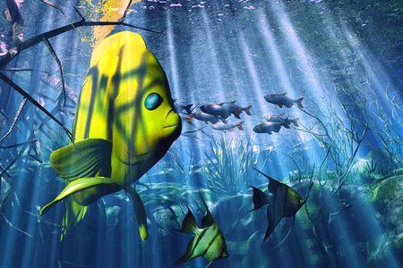 Underwater Stock Photo - 3346290