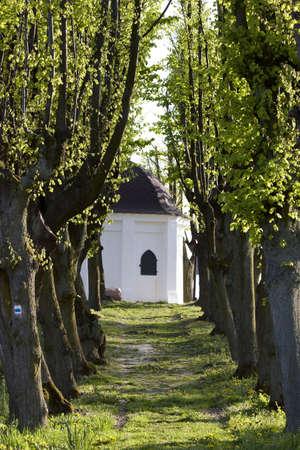 countrylife: Beautiful chapel in Trzebnica, Poland (near Wroclaw)