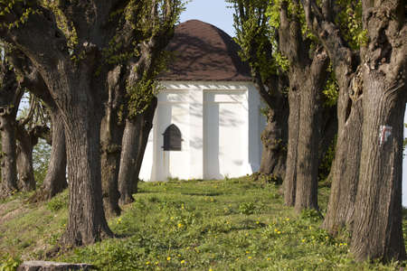 salix alba: Beautiful chapel in Trzebnica, Poland (near Wroclaw)