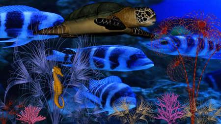 Underwater world Stock Photo - 4491850