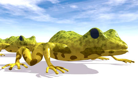 conserved: Ecological abstract with frogs