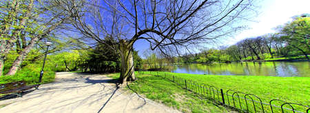 Park in spring time photo