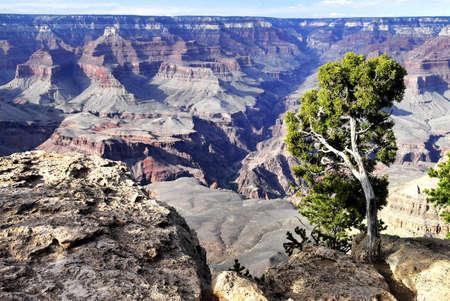 Colorado canyon photo