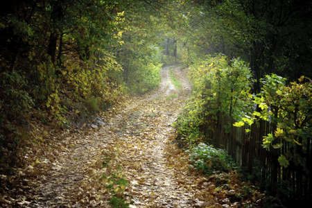 dolnoslaskie: Rural scenery