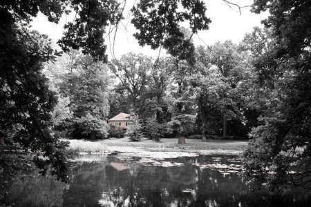 Cottage hidden in the woods photo