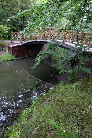 foot bridge: Japanese garden
