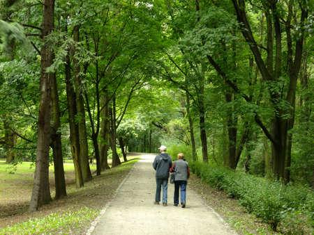 seniors walking: Park in spring time