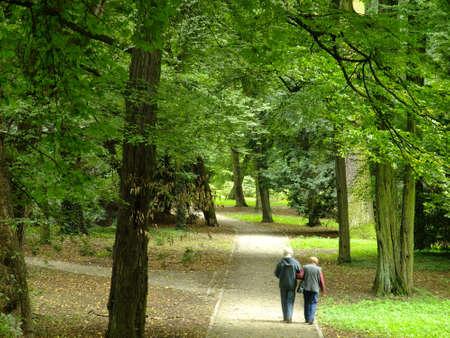 senioren wandelen: Park in het voorjaar