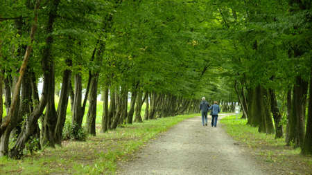 Park in spring time Zdjęcie Seryjne - 7635989