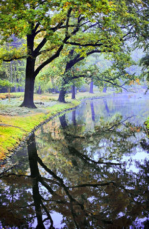 Japanese garden in fall time photo