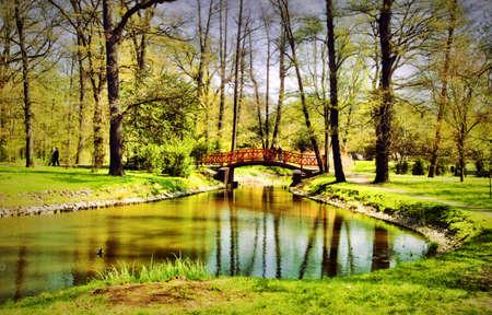 bassin jardin: Parc  Banque d'images