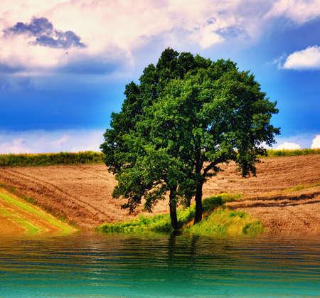 skyscape: Skyscape impresionante sobre la tierra & agua