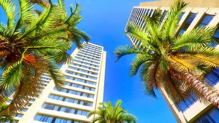 Hawaiian paradise photo