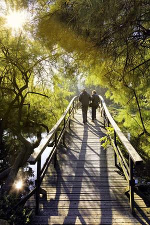 asian gardening: Japanese bridge Stock Photo
