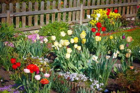 Spring garden Stock Photo - 10191121