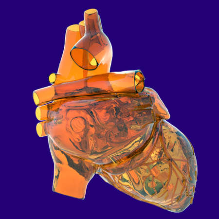 Model of human heart - made of glass photo