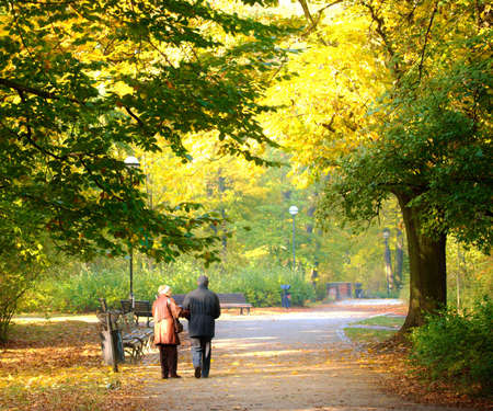 walk in the park: Senior couple in the foggy park