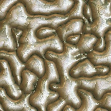 Human brain surface photo