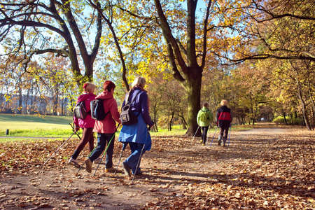 nordic walking: People in the park - Nordic walking Editorial