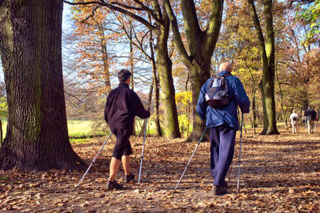 jogging in park: People in the park - Nordic walking Stock Photo