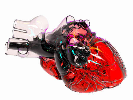 Model of artificial human heart photo