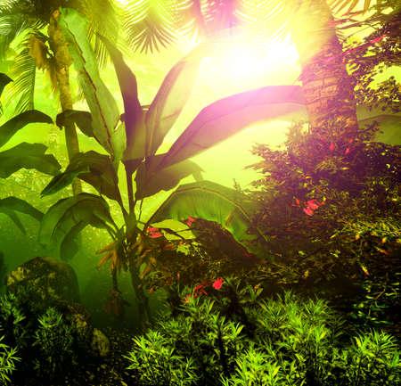 backlit: Ochtend mist in dichte tropisch regenwoud
