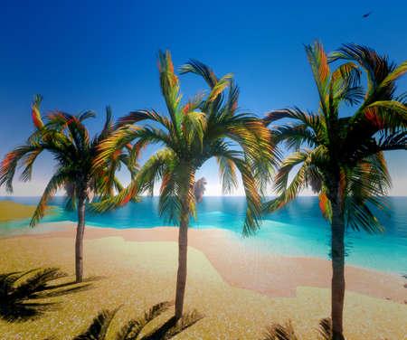 Hawaiian paradise 版權商用圖片 - 12675400