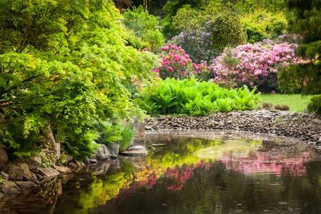 jardines con flores: Jardín lleno de flores Foto de archivo