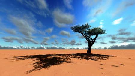Afrykańskiej sawannie Zdjęcie Seryjne - 13876394