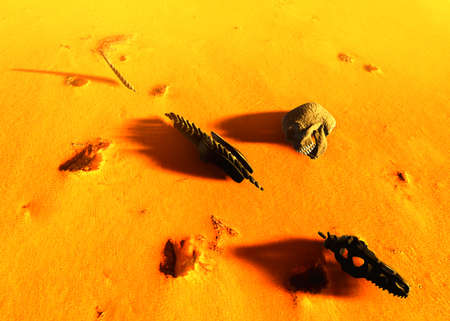 desolated: Dinosaur bones lying on desert Stock Photo