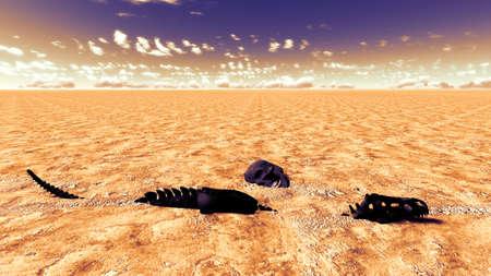 Dinosaur bones lying on desert Stock Photo - 13907673