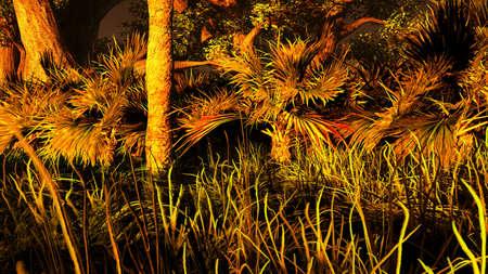 Wetland - swamp photo