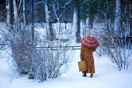Wintery walk photo