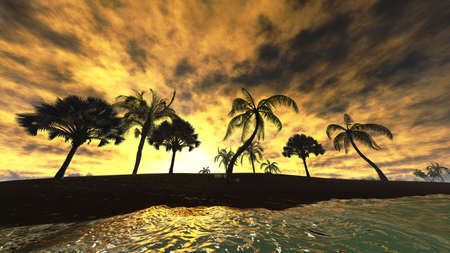 Hawaiian sunset in tropical paradise photo