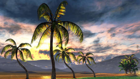 Tropical beach paradise photo
