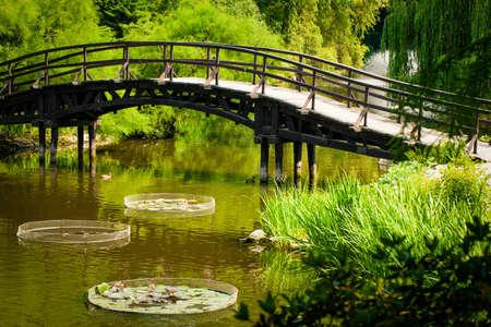 ponte giapponese: Giardino Ponte giapponese Archivio Fotografico