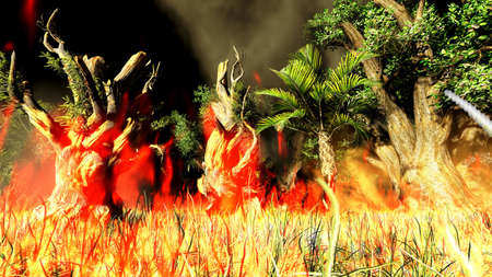 bush fire: Bush fire